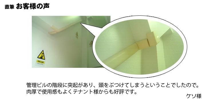 天井の突起をガード。